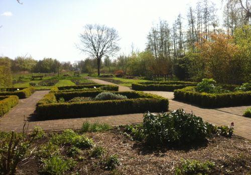 Van idyllenveldje en ruigtekruiden naar de smul- en heemtuin | Peter van den Berg 1