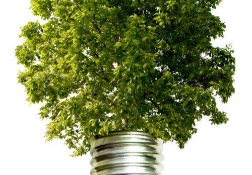 Verklaring van geen bedenkingen biomassacentrale Tweede Bloksweg Waddinxveen